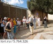Купить «Израиль. Экскурсионная группа в Иерусалиме на горе Сион», эксклюзивное фото № 5764326, снято 9 октября 2012 г. (c) Ирина Борсученко / Фотобанк Лори