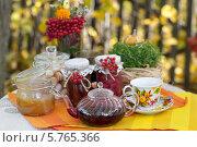 Чаепитие на улице с дарами осени (2013 год). Редакционное фото, фотограф Виктория Чеканова / Фотобанк Лори