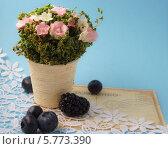 Цветы в горшке, старинное письмо и ягоды. Стоковое фото, фотограф Корнева Юлия / Фотобанк Лори