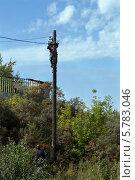 Купить «Электрик на опоре чинит электрические провода», фото № 5783046, снято 1 сентября 2012 г. (c) Александр Самолетов / Фотобанк Лори