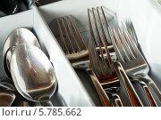 Вилки и ложки в кухонном столе. Стоковое фото, фотограф Вячеслав Сапрыкин / Фотобанк Лори