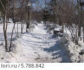 Весна в Южно-Сахалинске, апрель. Стоковое фото, фотограф Елена Киселева / Фотобанк Лори