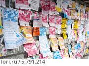 Купить «Объявления о кредите», фото № 5791214, снято 28 августа 2004 г. (c) Терешко Сергей / Фотобанк Лори