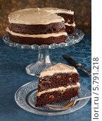 Купить «шоколадный торт», фото № 5791218, снято 16 августа 2018 г. (c) Food And Drink Photos / Фотобанк Лори