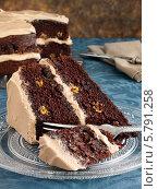 Купить «кусочек шоколадного торта, крупный план», фото № 5791258, снято 16 августа 2018 г. (c) Food And Drink Photos / Фотобанк Лори