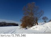 Морозный январский день. Стоковое фото, фотограф Ольга Коцюба / Фотобанк Лори