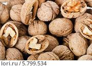 Купить «Целые и половинки грецких орехов, фон», фото № 5799534, снято 10 апреля 2014 г. (c) Tatjana Baibakova / Фотобанк Лори