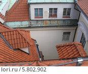 Черепичные крыши Праги (2011 год). Стоковое фото, фотограф Мартынова Наталия / Фотобанк Лори