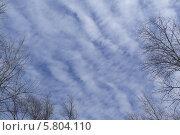 Весеннее небо. Стоковое фото, фотограф Владимир Моргунов / Фотобанк Лори