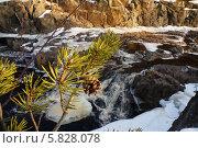 Таяние льда. Стоковое фото, фотограф Александр Тюнис / Фотобанк Лори
