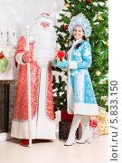 Снегурочка и дед Мороз стоят возле елки и камина, фото № 5833150, снято 17 октября 2013 г. (c) Сергей Сухоруков / Фотобанк Лори