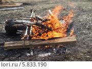 Купить «Костер в лесу», эксклюзивное фото № 5833190, снято 20 апреля 2014 г. (c) Валерий Акулич / Фотобанк Лори
