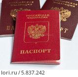 Купить «Заграничный паспорт лежит на двух российских паспортах», эксклюзивное фото № 5837242, снято 14 апреля 2014 г. (c) Игорь Низов / Фотобанк Лори