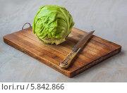 Купить «Кочан капусты и нож на деревянной разделочной доске», фото № 5842866, снято 22 апреля 2014 г. (c) Олеся Сарычева / Фотобанк Лори