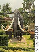 Купить «Таиланд. Тропический сад Нонг Нуч (Nong Nooch)», фото № 5851362, снято 22 февраля 2014 г. (c) Алексей Сварцов / Фотобанк Лори