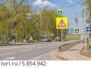Купить «Дорожные знаки 5.19.1 и 5.19.2 «Пешеходный переход» на шоссе и дублирующие знаки над проезжей частью», фото № 5854942, снято 29 апреля 2014 г. (c) Владимир Сергеев / Фотобанк Лори