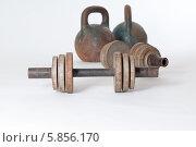 Купить «Старые металлические гантели и гири», фото № 5856170, снято 16 января 2014 г. (c) Pukhov K / Фотобанк Лори