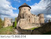 Купить «Вид на Венденский замок в Цесисе. Латвия», фото № 5868014, снято 3 мая 2014 г. (c) Виктор Карасев / Фотобанк Лори