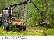 Купить «Погрузка бревен на прицеп в хвойном лесу», фото № 5877226, снято 10 июля 2013 г. (c) Валерия Попова / Фотобанк Лори