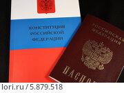 Купить «Конституция и паспорт. Российская Федерация», фото № 5879518, снято 14 марта 2014 г. (c) Алексей Семенушкин / Фотобанк Лори