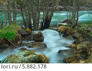 Красочная река в лесу. Стоковое фото, фотограф александр жарников / Фотобанк Лори