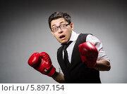 Купить «Забавный испуганный боксер-бизнесмен на сером градиентном фоне», фото № 5897154, снято 28 февраля 2014 г. (c) Elnur / Фотобанк Лори