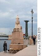 Купить «Сфинкс на Университетской набережной. Санкт-Петербург», эксклюзивное фото № 5899870, снято 13 мая 2014 г. (c) Александр Щепин / Фотобанк Лори