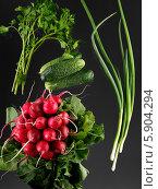 Купить «Свежие овощи - лук, петрушка, редис, огурцы», фото № 5904294, снято 19 марта 2019 г. (c) Кравецкий Геннадий / Фотобанк Лори