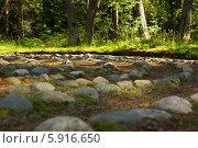 Лабиринт из камней. Вид сбоку. Стоковое фото, фотограф Хельга Танг / Фотобанк Лори