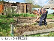 Подросток рыхлит землю граблями. Стоковое фото, фотограф Инесса Гаварс / Фотобанк Лори