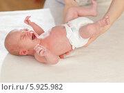 Купить «Неонатолог осматривает новорожденного малыша», фото № 5925982, снято 20 марта 2019 г. (c) BE&W Photo / Фотобанк Лори