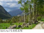 Дорога в горной долине, Кавказские горы. Стоковое фото, фотограф александр жарников / Фотобанк Лори