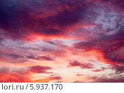 Купить «Красивое закатное небо с облаками», фото № 5937170, снято 26 апреля 2014 г. (c) Литвяк Игорь / Фотобанк Лори