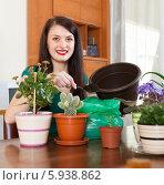 Девушка пересаживает цветы в горшках. Стоковое фото, фотограф Яков Филимонов / Фотобанк Лори