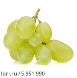 Купить «Ветка зелёного винограда, изолированно на белом фоне», фото № 5951990, снято 23 июля 2013 г. (c) Natalja Stotika / Фотобанк Лори