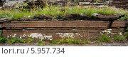 Петроглифы небольшой боярской писаницы. Стоковое фото, фотограф Ружьин Алексей / Фотобанк Лори