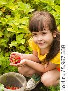Купить «Девочка собирает ягоды клубники», фото № 5967338, снято 1 июня 2014 г. (c) WalDeMarus / Фотобанк Лори