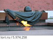 Купить «Могила Неизвестного Солдата», фото № 5974258, снято 8 мая 2014 г. (c) Игорь Долгов / Фотобанк Лори