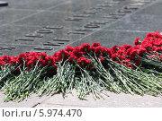 Купить «Красные гвоздики у Могилы Неизвестного Солдата в Москве», фото № 5974470, снято 8 мая 2014 г. (c) Игорь Долгов / Фотобанк Лори