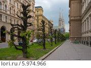 Церковь Обета,Вена (2014 год). Редакционное фото, фотограф Евгений Нелихов / Фотобанк Лори