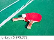 Ракетки и мяч для настольного тенниса (2014 год). Редакционное фото, фотограф Володина Ольга / Фотобанк Лори