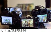 Три фотоаппарата с изображением доллара на дисплее. Стоковое фото, фотограф Nikolay Grachev / Фотобанк Лори