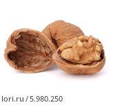 Купить «Грецкие орехи на белом фоне», фото № 5980250, снято 19 декабря 2011 г. (c) Natalja Stotika / Фотобанк Лори