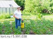 Женщина опрыскивает картофель от вредителей. Стоковое фото, фотограф Марина Славина / Фотобанк Лори