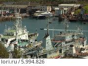 Катер в Южной бухте Севастополя (2014 год). Редакционное фото, фотограф Юрий Антипычев / Фотобанк Лори