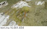 Прозрачная горная река сбегает по порогам. Стоковое фото, фотограф Ирина Каралкина / Фотобанк Лори