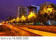 Купить «Пасео де ла Кастельяна в летней ночью. Мадрид. Испания», фото № 6009330, снято 28 августа 2013 г. (c) Яков Филимонов / Фотобанк Лори