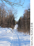 Зима. Стоковое фото, фотограф Светлана Головченко / Фотобанк Лори
