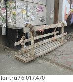 Купить «Деревянная подвесная люлька для фасадных работ», фото № 6017470, снято 8 июня 2014 г. (c) Ельцов Владимир / Фотобанк Лори