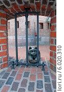 Купить «Фридрихсбургские ворота. Кёнигсбергский кот - скульптура», эксклюзивное фото № 6020310, снято 15 июня 2014 г. (c) Svet / Фотобанк Лори
